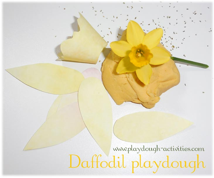 Daffodil playdough activity
