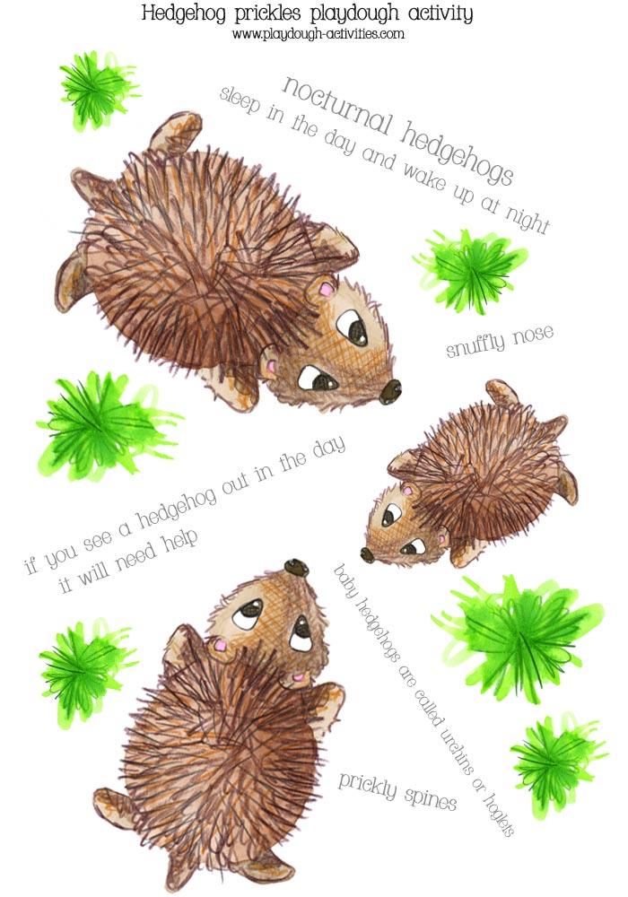 Hedgehog sizes and prickle building playdough mat printable