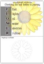 FLOWER car check words