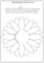 Sunflower outline template