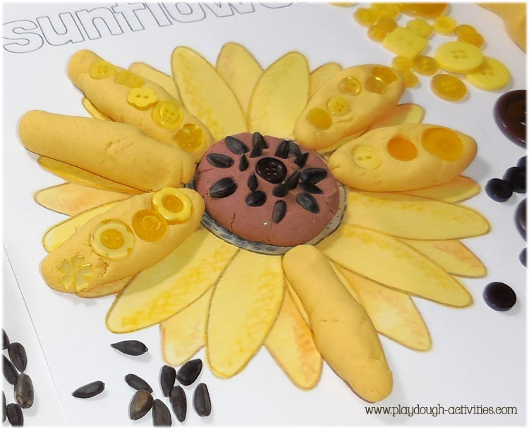 Sunflower seeds and playdough activities