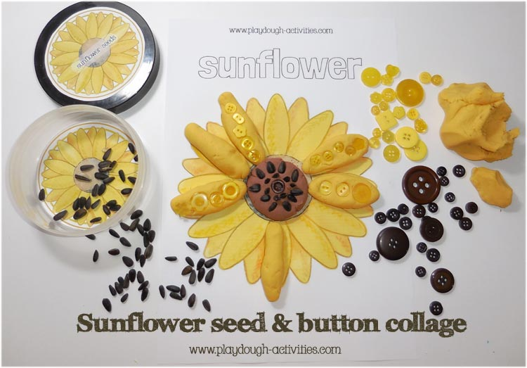 Sunflower seed playdough collage