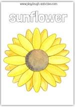 Sunflower playdough mat