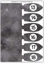 Tadpole counting tails 13 to 18