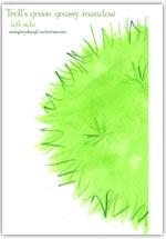 1. half of Troll's green grass meadow