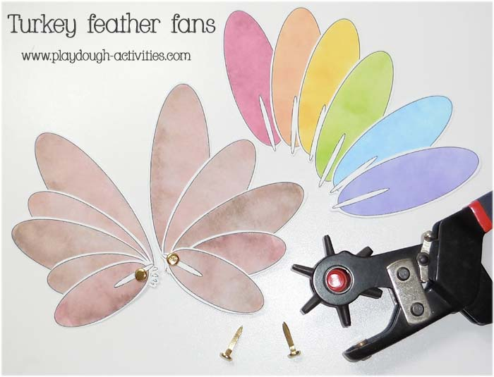 Turkey tail feather fans
