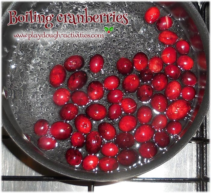 Boiling cranberries to soften them for playdough