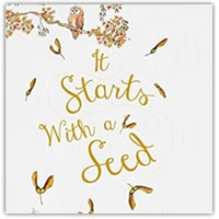 It starts with a seed - children's picture book on amazon.co.uk