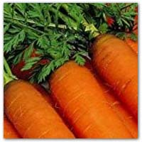 Buy carrot seeds to grow your own - amazon.co.uk